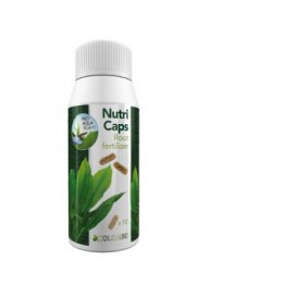 Flora Grow Nutri Caps